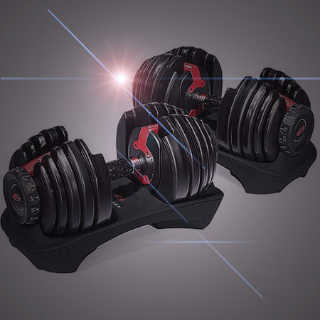 Bowflex 552 Time Saver Adjustable Dumbbell Set