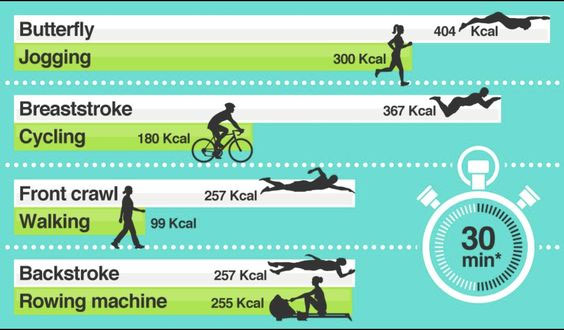 calories burned by swimming